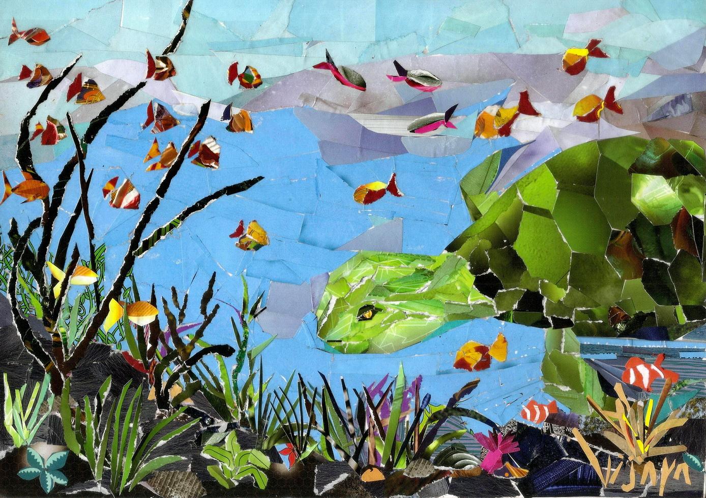 http://4.bp.blogspot.com/-ieEaaUMXdDY/TowTlhPthmI/AAAAAAAAA-0/Kcy137OEURU/s1600/Green_Turtle_Reef+resize.jpg