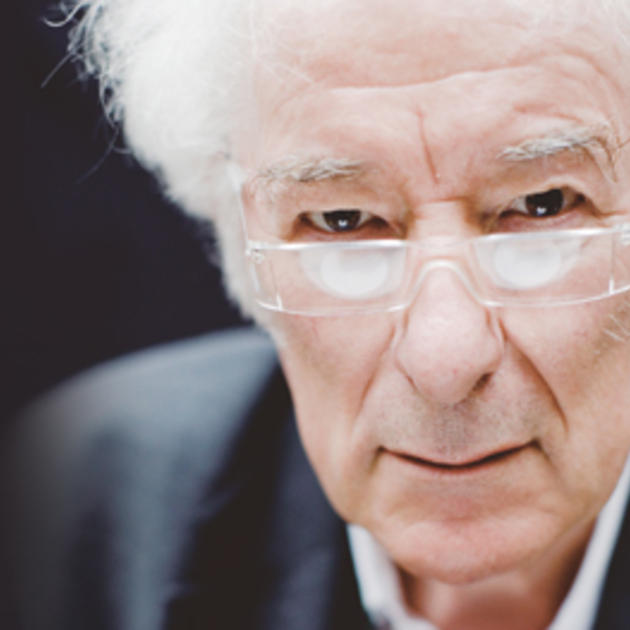 the peninsula seamus heaney In the third stanza the heaney observes the constable and his slightly sweating hair the imagery of the sweating hair displays the policeman's noticeable desperation to find something anything to convict heaney's father for.