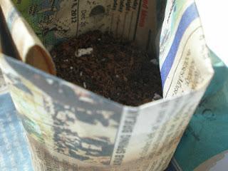 DiY seed starter pot