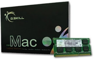 Gskill 4Gb X 1 Ddr3 1600Mhz Cl11 Value Ram for Laptop