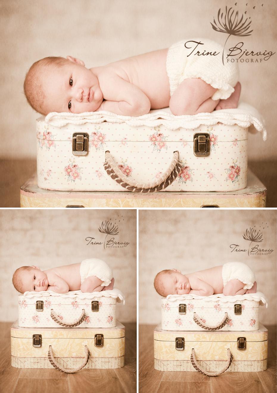nyfødtbilder av liten jente fra oslo - fotograf trine bjervig i Tønsberg