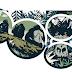 جوجل تحتفل للذكري الـ 84 لميلاد ديان فوسي