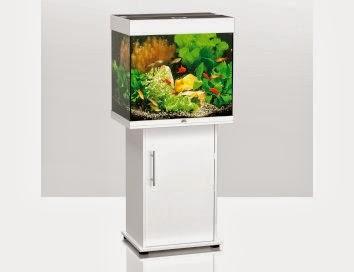 scathach testet und berichtet testbericht aquarium. Black Bedroom Furniture Sets. Home Design Ideas