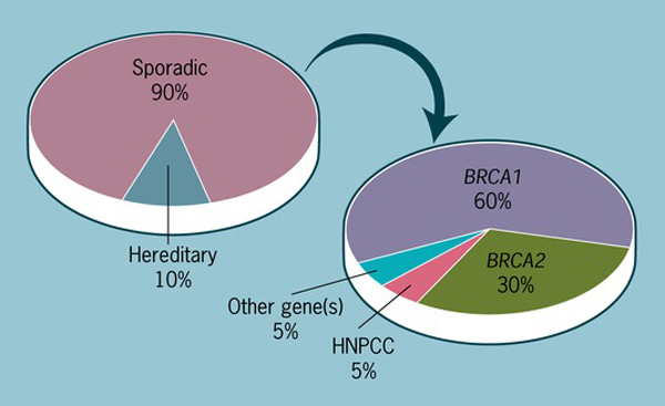 Oncogene - Models of genetic susceptibility to breast cancer