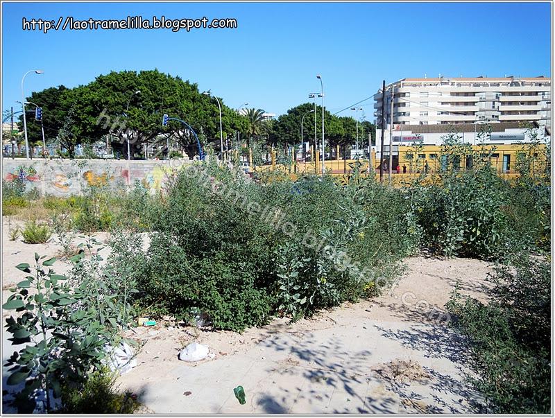 La otra melilla jard n urbano barrio industrial for Jardin industrial