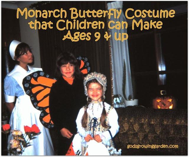 Monarch Butterfly Wing Tutorial