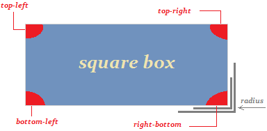 Square Box pictures