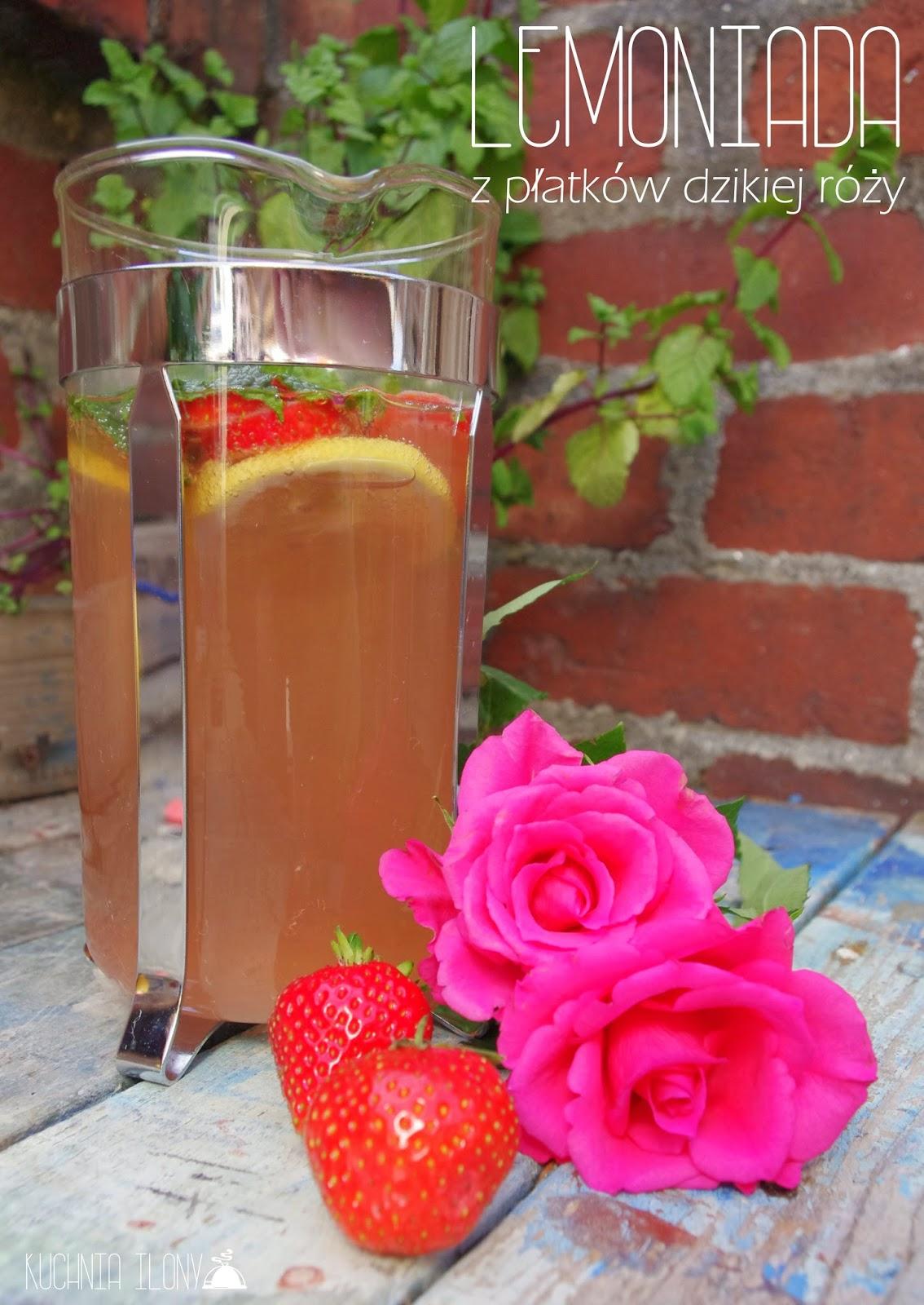 lemoniada z dzikiej róży