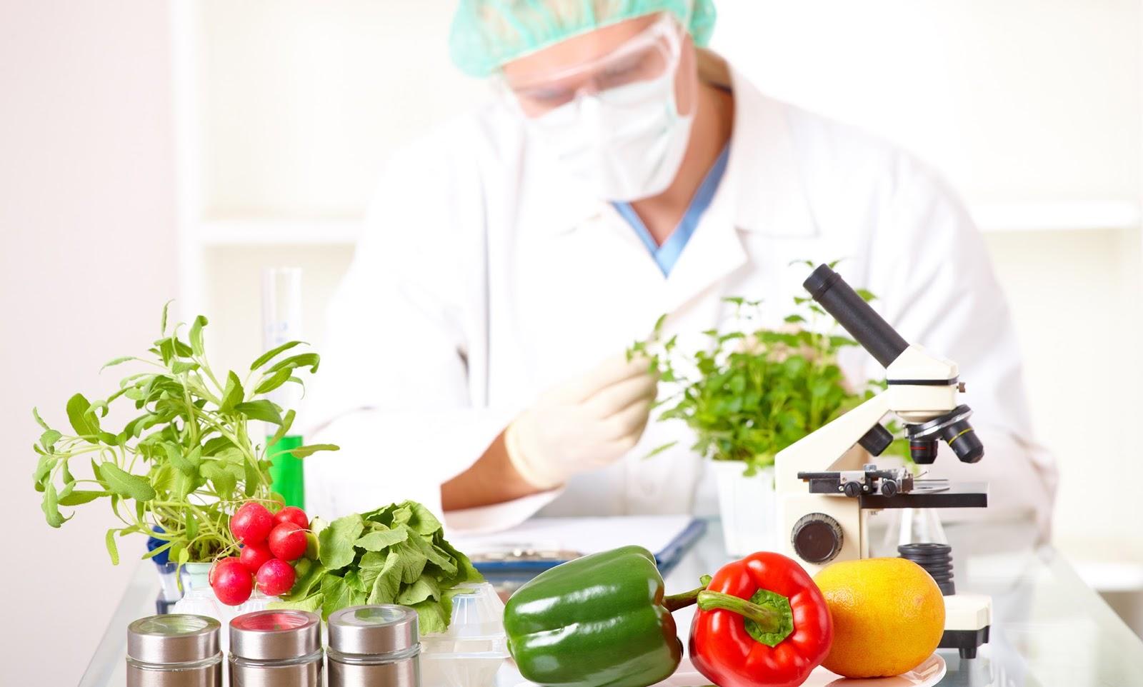 Resultado de imagen para Modelos matemáticos aplicados a la vida útil de los alimentos