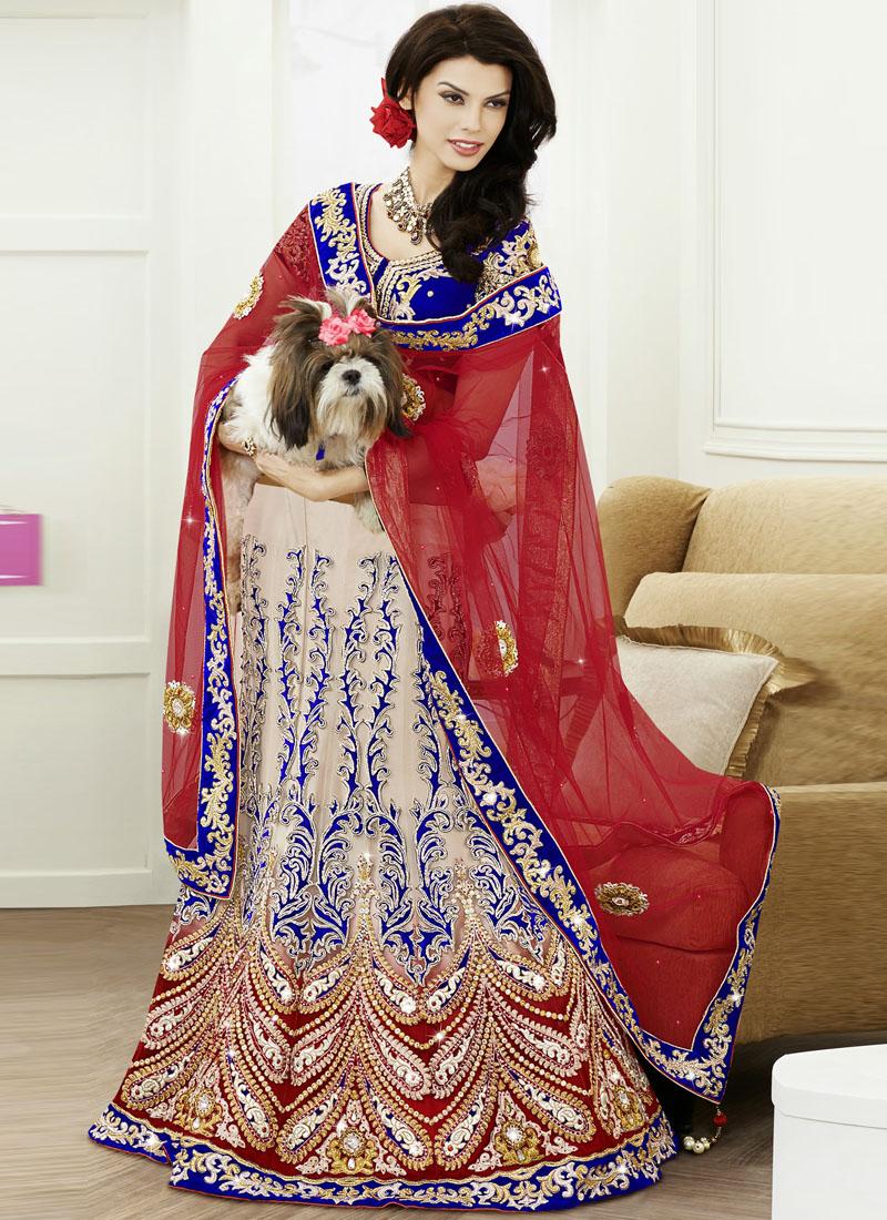 cream net embroidered work designer bridal wear a line
