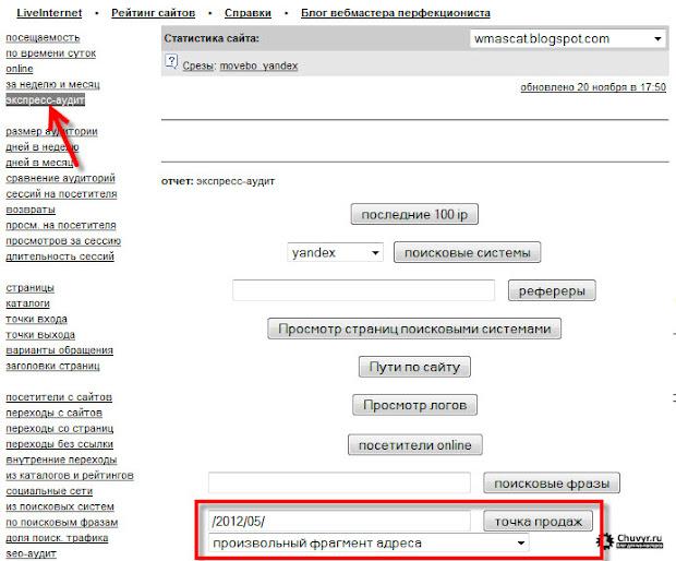 экспресс-аудит liveinternet, точка продаж