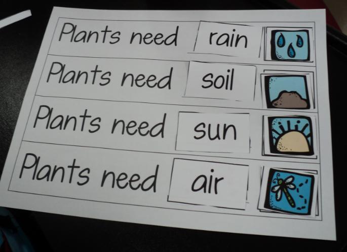 Plant Observation Worksheet | Free Printable Math Worksheets - Mibb ...
