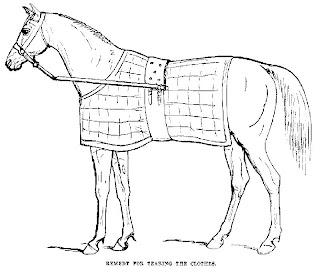 Desenhos Preto e Branco Cavalos ensinados e domados selados e bonitos Colorir