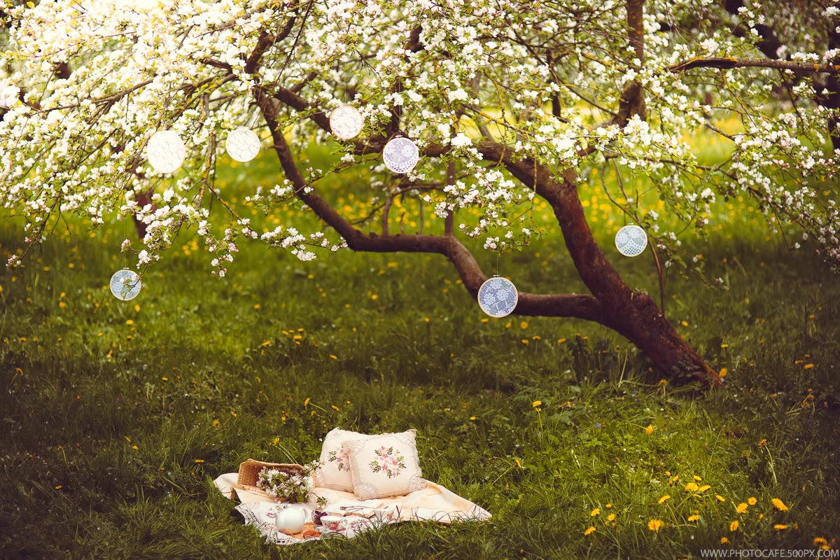 Картинки пикников на природе в дождливую погоду