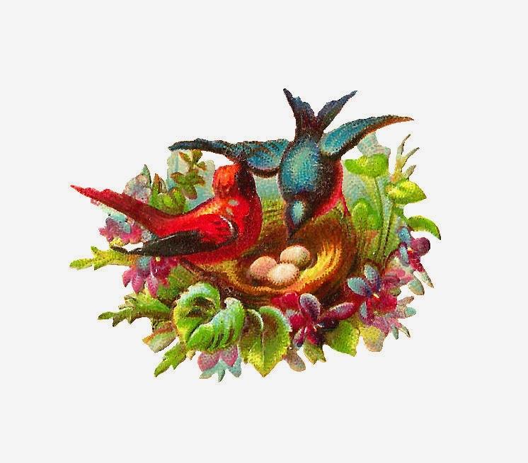 http://4.bp.blogspot.com/-ihJoLSPxRJA/UyhmqVNubYI/AAAAAAAATWQ/XjUVXbFg0lI/s1600/bird_nest_03.jpg
