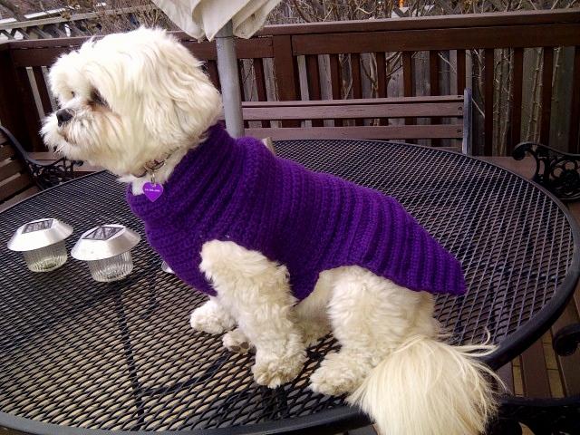 TRICO y CROCHET-madona-mía: Trajes para perros-(cachorro) modelo en ...