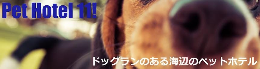 Pet Hotel 11! ドッグランのあるペットホテル「横須賀、葉山、逗子、三浦市、横浜」