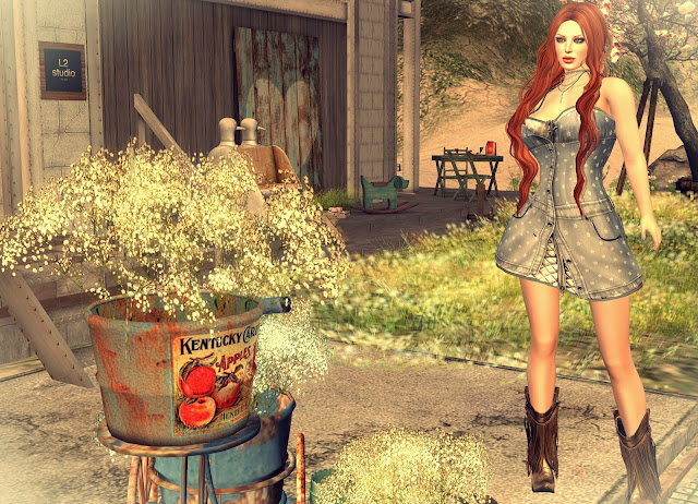gabrielle denim dress,shiny shabby may