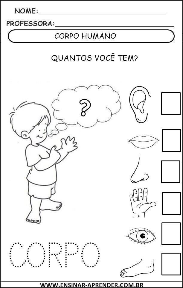 Amado ATIVIDADES ESQUEMA CORPORAL | Cantinho do Educador Infantil PU86