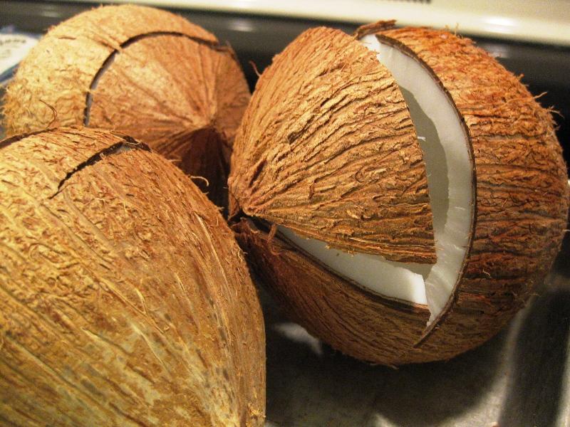 coconut husk as paper