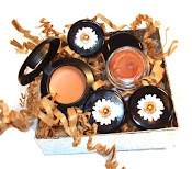GARDEN PARTY PACKAGE 3 Mineral Eye Shadows 1 Cream Concealer 1 Lip Gloss