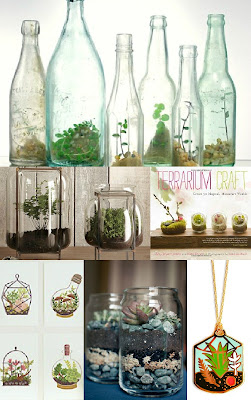 Collage: Terrariums