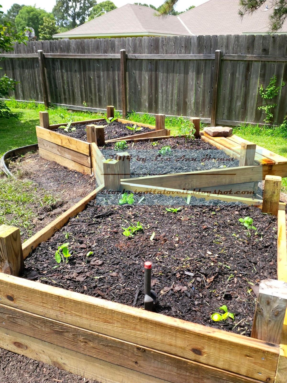 http://4.bp.blogspot.com/-iiLiqsNhRZw/U54NbEkI62I/AAAAAAAADsU/aAeenjVGsXM/s1600/GARDEN_making+raised+gardens+4x4,+May+31,+2014+(54)(1).jpg.jpg.jpg