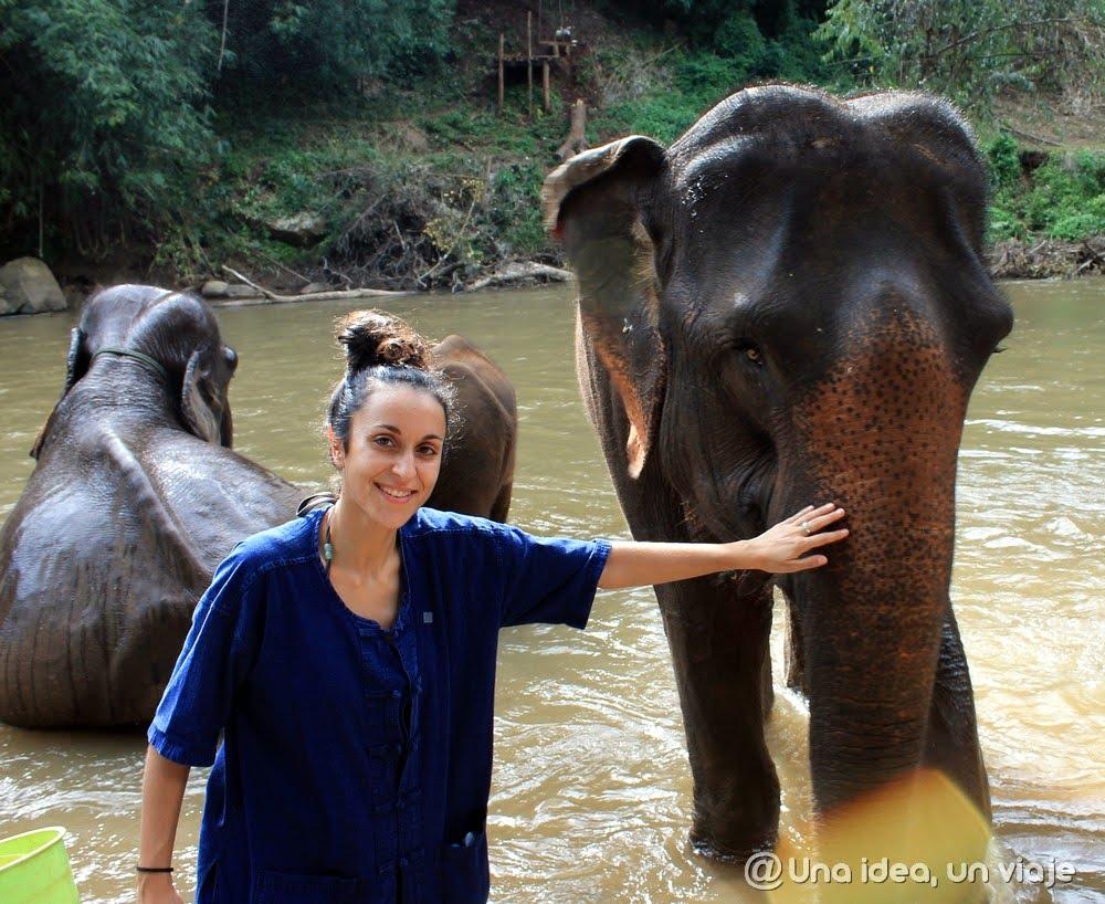 Visitar Elefantes en Tailandia