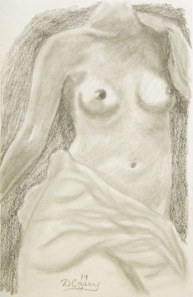 140919 - Day 19a - 30 in 30 Challenge - Graphite on paper -  Dave Casey - TheDailyPainter.jpg