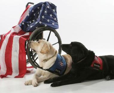 wheelchair usa