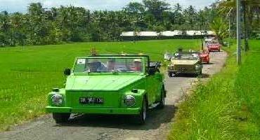VW Safari Bali Tour