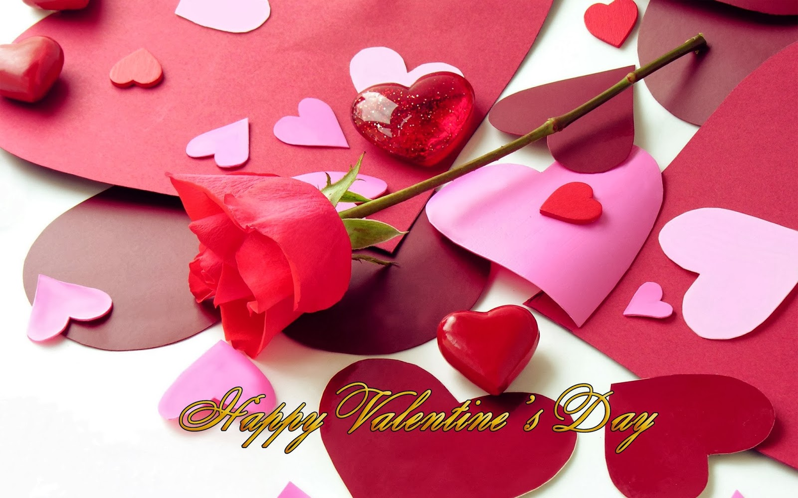 happy valentines day  with flowers, sms, gift, wallpapers, Beautiful flower