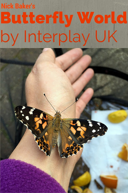 Butterfly World by Interplay UK