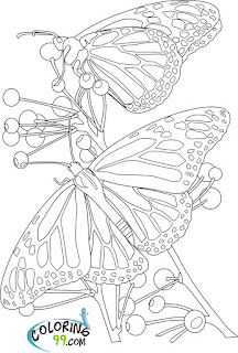 printable butterfly and flower coloring pages
