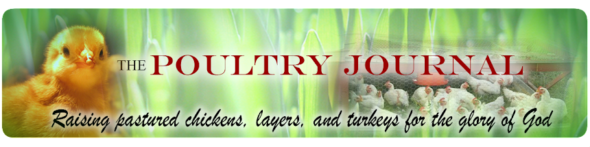 The Poultry Journal