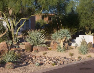 Backyard Desert Landscaping | Design Ideas home