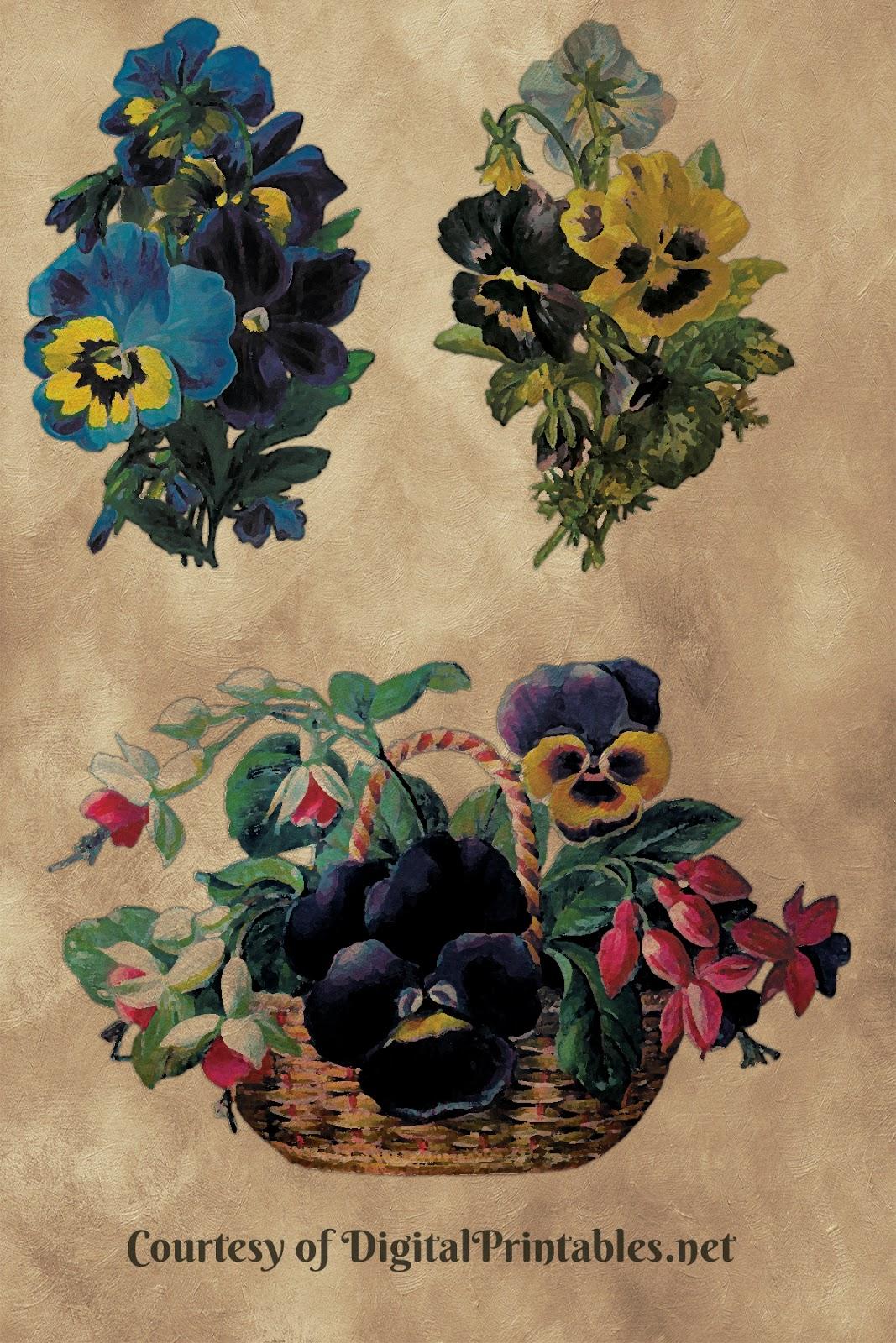 free clipart pansies vintage