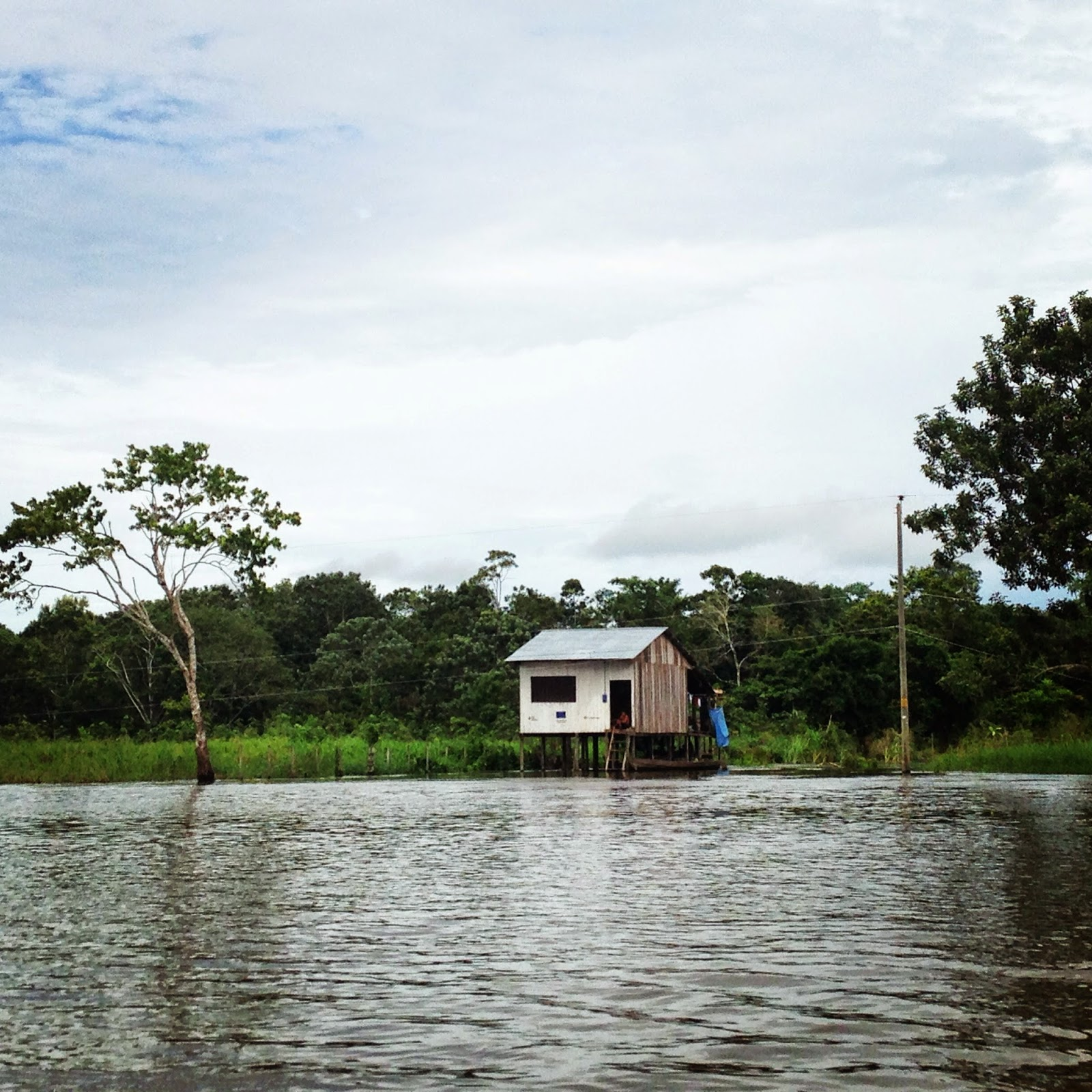 life on the amazon river peru
