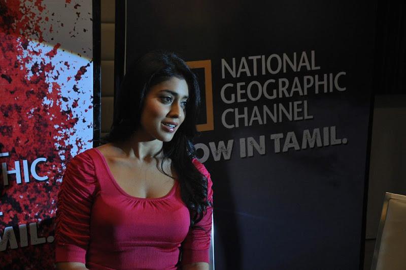 Shriya at NGTC Launch unseen pics
