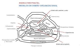 modelo red fractal-modelos de diseño organizacional