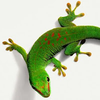 gecko reptil