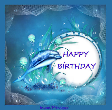 Dolphin fish birthday celebration card a325 birthday wishes cards
