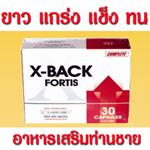 X-Back Fortis (เอ็กซ์ แบ็ก ฟอร์ทิส ) สำหรับท่านชาย