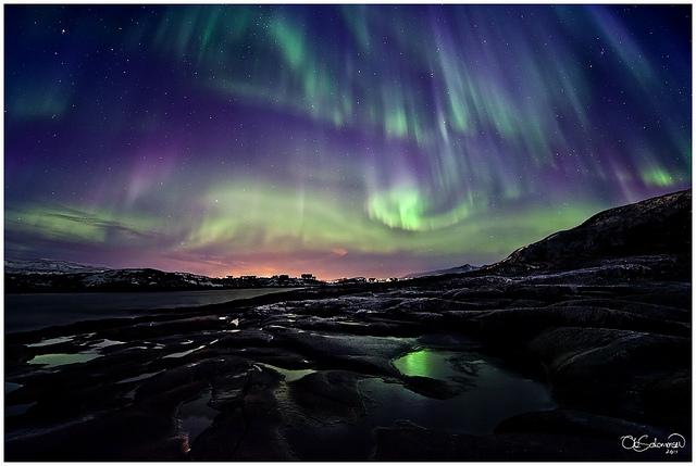Divine Presence oleh Ole C. Salomonsen