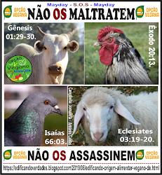 Não maltratem os animais e aves. Clique na imagem abaixo e veja.