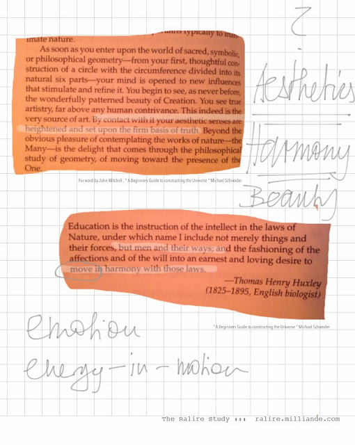 The Ralire Study - Sketchbook, Logbook , Image Library , Inquiry into the Nature of Random Linear Remnants , Lines and Art Research Project by Milliande Demetriou