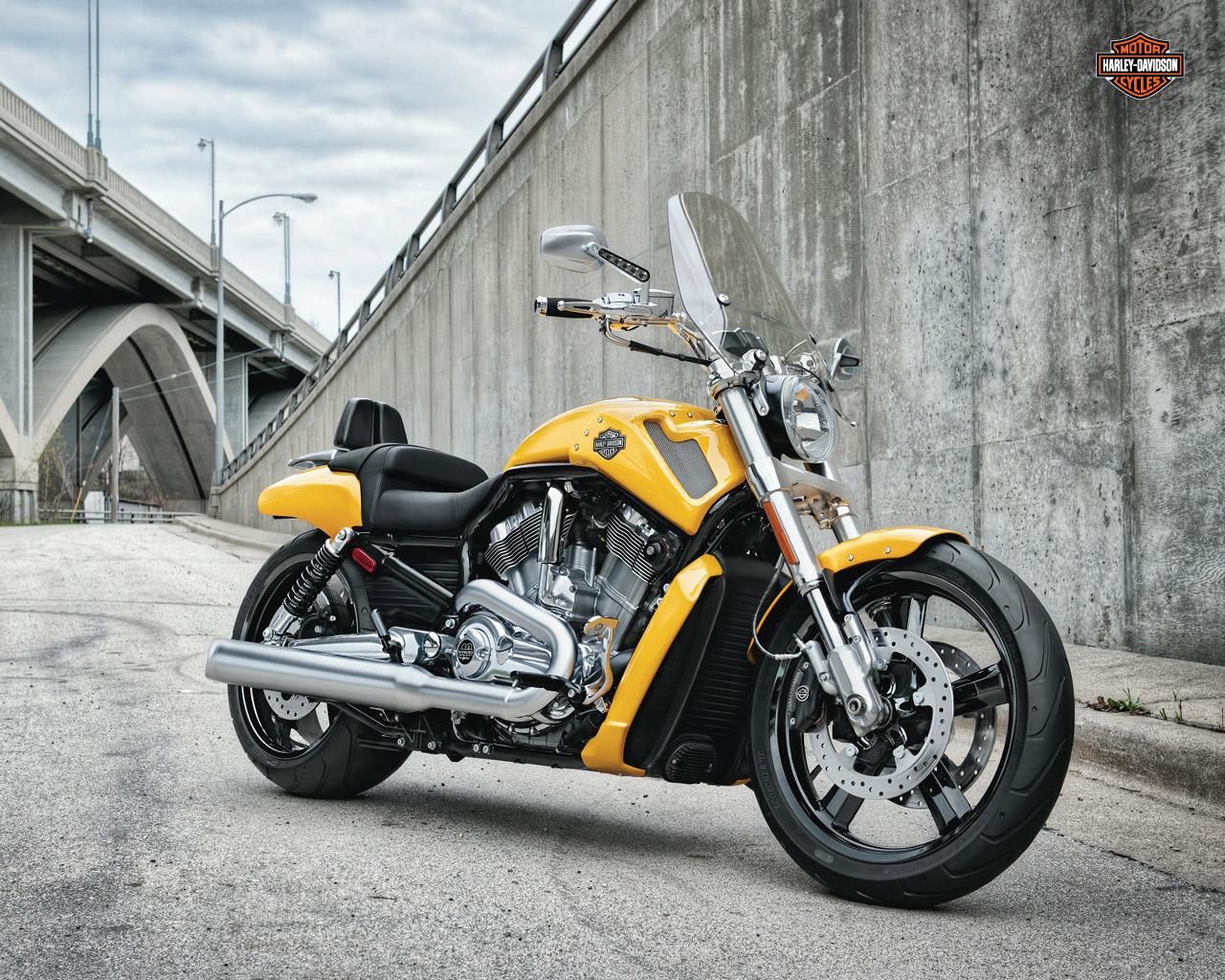 Harley Davidson 2012 Harley Davidson Vrscf V Rod Muscle