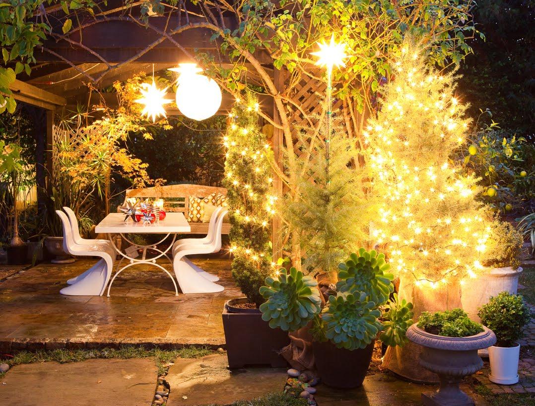 MOLLY WOOD GARDEN DESIGN Simple Christmas Exterior