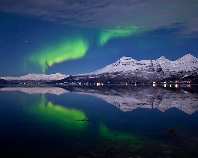 Aurora's From Norway