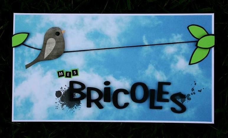 Mes bricoles - le blog de Bricolette!